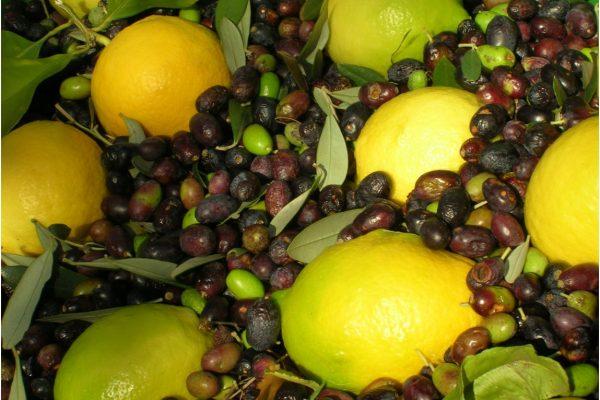 2. Agrumato 6. Olive e limoni mescolate